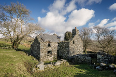 Caerfadog Uchaf (ShrubMonkey (Julian Heritage)) Tags: abandoned derelict decay forsaken dwelling house home farm farmhouse dilapidated ruin isolated silence remote structure stone north wales snowdonia caerfadoguchaf isolation tree cwmpennant