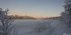 Sunset at Juutuanjoki - Inari (alpros) Tags: finland finnland suomi northerneurope nordeuropa ivalo avvil inarikommun inarimunicipality veskoniemi lapland lappland bezirkinari snow schnee snö vinter winter juutuanjoki river fluss älv