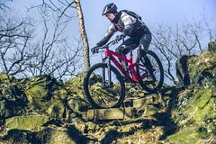 2018.02.25. Borsberg MTB-7 (Michael_Topp) Tags: fahrrad mountainbike himmel licht dresden sony nex