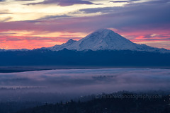 DSC05486 (www.mikereidphotography.com) Tags: sonyalpha zeiss canon seattle rainier sunrise fog