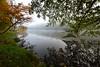 Un peu d'automne (Excalibur67) Tags: nikon d750 sigma 1224f4556iidghsm paysage landscape arbres trees vosgesdunord brume brouillard eaux étangs automne alsace feuillage reflexion reflets
