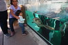 PC230006 (photos-by-sherm) Tags: living coast discovery center aquarium science san diego ca california winter environmental preserve zoo educational birds sea creatures