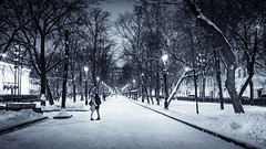 Moscow. Winter Wanderings II. (icarium82) Tags: sonydscrx1rm2 blackandwhite bnw bw monochrome schwarzweiss street travel moscow moskau moskva russia wanderings city alley winter snow cold freezing sundaylights