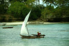 dhow (vitofonte) Tags: dhow barca boat vela sail pescador fisherman oceano ocean oceanoindico naturaleza nature natura natureza kizimkazi zanzibar tanzania africa vitofonte