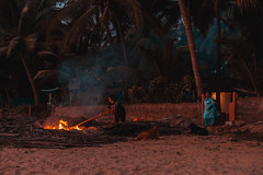 Burning the now useless palms fence (Scalino) Tags: goa beach southgoa patnem startoftheseason october india burning burn palms women
