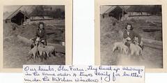 Roselle Valdes-Scott Feeding the Motherless Lambs at Chitterne Wiltshire 1960's (Bury Gardener) Tags: blackandwhite bw oldies snaps scans 1960s people folks england uk wiltshire
