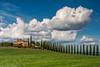 Agriturismo Poggio Covili (AnBind) Tags: ausland fotoreise orte urlaub italien toskana ereignisse 2017 castiglionedorcia toscana it