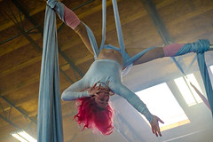 DSCF7753.jpg (RHMImages) Tags: fogmachine xt2 workshop women interior silks panopticchopsticks aerials people fuji acrobats portrait freeflowacademy action fujifilm chopstickguys gymnastics ballet
