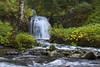 Good Things Fall (Synapped) Tags: lewis river twin falls washington waterfall fall water autumn