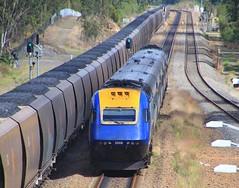 XPT2008 trails as it thunders through Metford station (bukk05) Tags: xp2008 railpage:class=140 railpage:loco=xp2008 rpaunswxpclass rpaunswxpclassxp2008 xpt2008 xpt commonwealthengineering aseabrownboveri metford paxmanvp185 countrylink wagons explore export engine railway railroad railpage rp3 rail railwaystation railwaystations train tracks tamron tamron16300 trains transport photograph photo passenger passengertrain publictransport loco locomotive horsepower hp flickr diesel station standardgauge sg spring signal 2017 australia artc canon60d canon coal coaltrain nswtrainlink nsw newsouthwales newcastle cityofnewcastle mainline