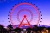 The Orlando Eye (Geoff Livingston) Tags: ferris wheel landscapre eye orlando coca cola blue hour