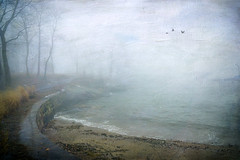 Morning Fog (JMS2) Tags: fog weather winter scenic shore longislandsound larchmont texturebykerstinfrank nature seawall shoreline westchestercounty