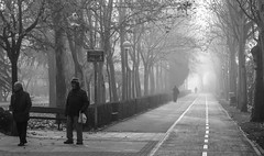 Felicidad en la Niebla (52/365) (Walimai.photo) Tags: black white blanco negro niebla mist parque park walk paseo lx5 lumix panasonic street calle candid robado portrait retrato
