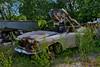 alfa romeo GT 1300 junior (riccardo nassisi) Tags: auto abbandonata abandoned rust rusty rottame relitto ruggine ruins rottami scrap scrapyard epave wreck wrecked alfa romeo piacenza