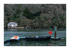 RIVER FOWEY PONTOON 1 (Barry Haines) Tags: riverfoweypontooncornwallsonya7r2a7rii85mmgmf1 river fowey pontoon cornwall sony a7r2 a7rii 85mm gm f14