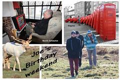 Joe's Birthday weekend (ec1jack) Tags: bushey park kingston london england britain uk europe winter cold nature kierankelly canoneos600d ec1jack outoforder phoneboxes sculpture noveltyautomation deer