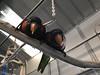 IMG_6716 (michelleoiseau) Tags: aquariumofthepacific longbeach lorikeets
