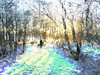 -evaluate-sequence_Or_0038 (troutcolor) Tags: imagemagick evaluatesequence ardinning snow