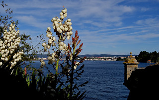 Ferrol desde el Castillo de San Felipe. Galicia. España.