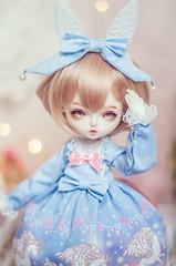 Sweety Lulu (nekophoenix) Tags: bjd leekeworld chloe mini girl cute pastel sweetlolita sweet lolita gothiclolita doll