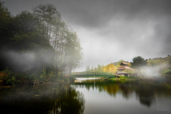 Foggy Morning at Festival Park Lake