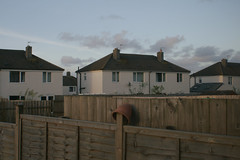 Cornish story. Estate. evening. (maciej.zdun) Tags: cornish story cornwall 2016 obrazki po polsku