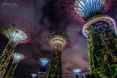 Supertree Grove (Ashley Wallace - Touchdown Aviation) Tags: flickr colour clouds sky twilight night lens fisheye wideangle nikon photography travel garden tree object design manmade lights supertreegrove gardensbythebay asia singapore