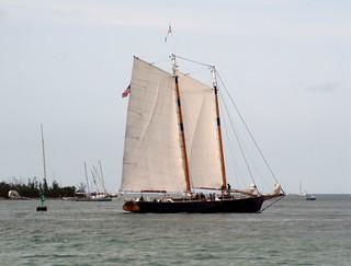 Sail Among Wrecks
