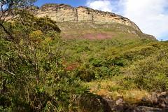 The Nature Inspires me 🇧🇷 (Luiz Augusto Dantas) Tags: mounts green verde nature natureza chapadadiamantina bahia brasil