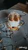 IMG_7288 (rozeki) Tags: kuliner bali indonesia food drink