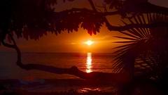 Maui Sunset (Jim Mullhaupt) Tags: photo flickr geographic picture pictures camera snapshot photography nikoncoolpixp900 nikon coolpix p900 nikonp900 coolpixp900 sunset sundown dusk sun evening endofday sky clouds color red gold orange pink yellow blue tree palm outdoor silhouette weather tropical exotic wallpaper landscape jimmullhaupt cloudsstormssunsetssunrises maui hawaii kihei keawakapubeach
