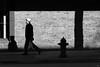 namo amituofo (bluechameleon) Tags: sharonwish bluechameleonphotography brickwall chinatown grafitti hat lines man message shadowplay shadows sidewalk street streetphotography texture urban vancouver window
