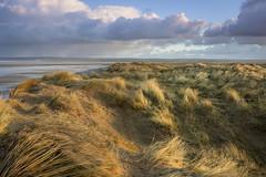 northam burrows (jon.capps) Tags: northdevon beach sun windy cold sanddunes clouds sunrise lowtide seagrass movement beautifulday canon1740mm14lusm canon60d manfrottotripods hitechfilters ndgrad shutterrelease