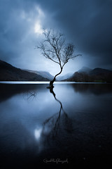 Sunrise Blues (Gareth Mon Jones) Tags: snowdonia longexposure lake tree blue north wales
