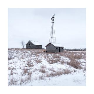 Windmill Homestead