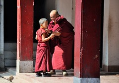 Caring (mala singh) Tags: monks buddhism monastery rumtek gangtok sikkim india