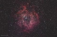 Rosette Nebula (Themagster3) Tags: rosette nebula nebulosity nightsky astronomy astrophotography deepsky