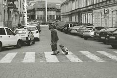 . (norbertkunecki) Tags: bw blackandwhitephotography blackandwhite exa500 ihagee exakta analogphotography streetphotography street poland wroclaw