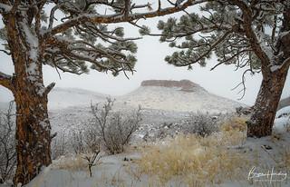 Sandstone Solitude - Boulder County, Colorado