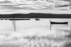 Transiti - (Marceddì) (nicolamarongiu) Tags: biancoenero blackandwhite monocromo monocrome acqua mare water luce tramonto sunset sardegna marceddì terralba riflessi reflections barca boat italy italia paesaggio landscapes