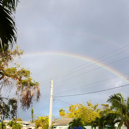 Rainbow over Key West