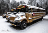 Cold School Buses (Kevin Adams.1) Tags: bus truck vehicle transportation snow winter cold schoolbus kalamazoo kzoo michigan puremichigan white yellow tire windows windshield mirror three 3 lot greyskies tree kids children students school january 2018 education taxi stalled hdr lightroom