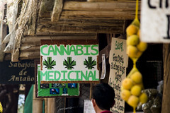 What the body needs. (Alfonso.vecino) Tags: colombia santander mesa de los santos bucaramanga cannabis medicinal weed mercado campesino