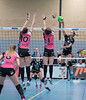 41170719 (roel.ubels) Tags: flynth fast nering bogel vc weert sint anthonis volleybal volleyball indoor sport topsport eredivisie 2018 activia hal