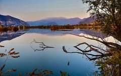 Rami spezzati (giannipiras555) Tags: tramonto landscape paesaggio panorama riflessi lago natura oasi