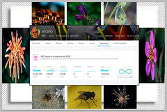 7.000.000 visits (thanks for your visits and comments) (Jocarlo) Tags: art afotando adilmehmood abstracto arttate abstract adobe animales a7 anotherworlds autumn animal animals arbol arboles ant avion agua araña avispa nationalgeographic calles parques magicalskiesmick magicalskies nature makro macro blinkagain bosque backlight barcelona barcos bw buques butterfly clouds crazygeniuses crazygenius clickofart ciudades creative creativa carteles creativeartphotography color colores colour colours cruceros contraluz cambioclimático macros