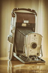 Old Polaroid Camera.jpg