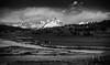 DSC_4258-HDR-Edit-2.jpg (sjminer49) Tags: grandtetonnationalpark yellowstonenationalpark
