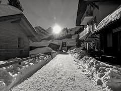 googlepixel2 pixel2 pixel google winter street search... (Photo: Andreas Voegele on Flickr)