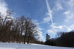 DSC08423 (kriD1973) Tags: europe europa deutschland germania allemagne germany bayern baviera bavaria ammergauer alpen ettal snow neve schnee neige